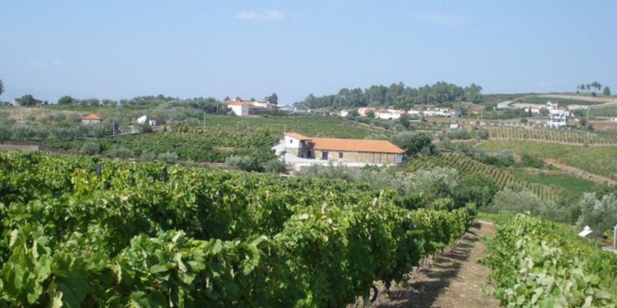 Quinta do Roncão